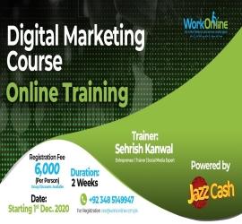 Digital Marketing course | WorkOnline | 1 Dec, 2020